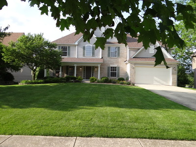 Kane County Single Family Home New: 776 Wild Ginger Road