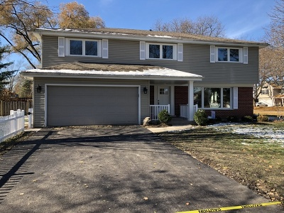 Arlington Heights Single Family Home For Sale: 1310 North Dryden Avenue