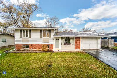 Mokena Single Family Home For Sale: 9436 Elm Avenue