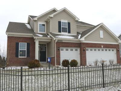 Minooka, Channahon Single Family Home For Sale: 709 Long Ridge Trail