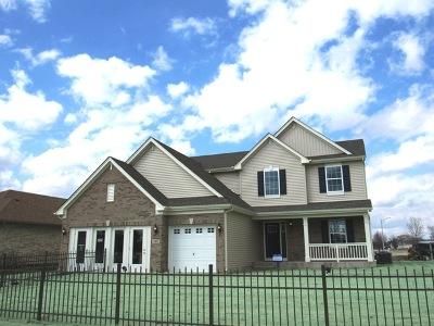 Minooka, Channahon Single Family Home For Sale: 606 Edgewater Drive