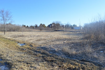 Homer Glen Residential Lots & Land For Sale: 16235 South Peppermill Trail