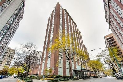 Chicago Condo/Townhouse New: 1325 North State Parkway #7E