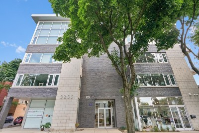 Chicago Condo/Townhouse New: 3255 North Paulina Street #3A