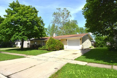 Streamwood Single Family Home For Sale: 619 Lincolnwood Drive