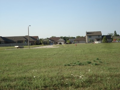 Dwight Residential Lots & Land For Sale: 1402 South David Drive
