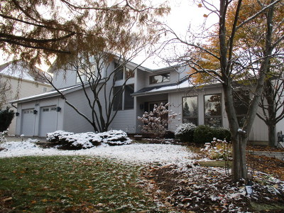 Naperville Single Family Home For Sale: 2041 Keim Drive