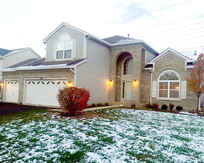 Bolingbrook IL Single Family Home New: $299,999