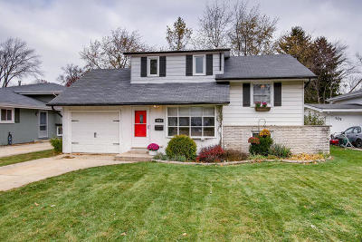 Wheaton Single Family Home For Sale: 1015 Dawes Avenue