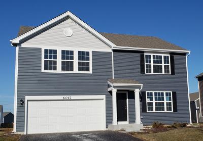 Joliet Single Family Home New: 6017 Winterhaven Drive