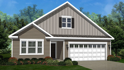 Single Family Home New: 930 Americana Avenue