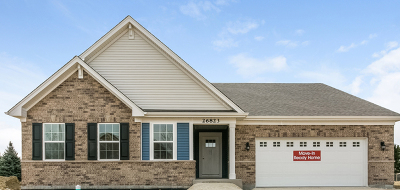 Plainfield Single Family Home For Sale: 16920 South Callie Drive