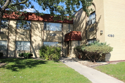Cook County Condo/Townhouse New: 4260 West Ford City Drive #203