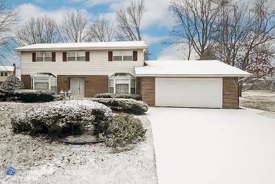 Lansing Single Family Home For Sale: 2031 Kettle Court