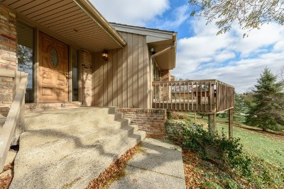 Cook County Single Family Home New: 1450 Turkey Trail