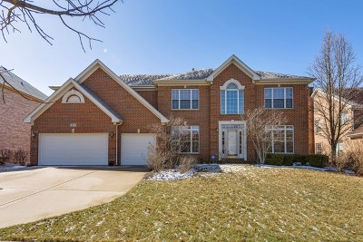 Palatine Single Family Home For Sale: 471 West Falkirk Place