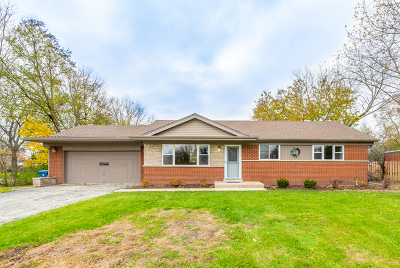 Mount Prospect Single Family Home For Sale: 410 South Busse Road