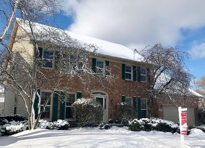 Naperville Single Family Home For Sale: 2203 Mercer Court