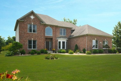 Plainfield Single Family Home For Sale: 11459 South Heggs Road