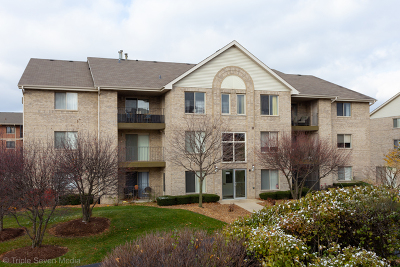 Oak Forest Condo/Townhouse For Sale: 6830 Ridge Point Drive #3B