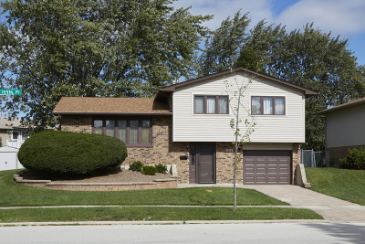 Tinley Park Single Family Home New: 7818 165th Place