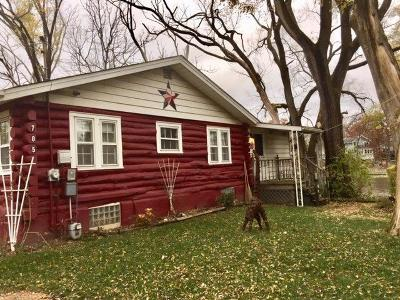 Lowell Single Family Home For Sale: 705 South Lakeview Drive