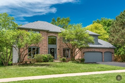 Naperville Single Family Home For Sale: 2245 River Woods Drive