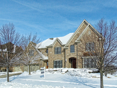 Elgin IL Single Family Home New: $594,990