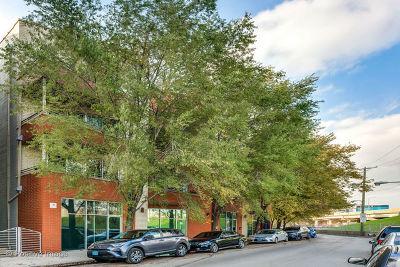 Chicago Condo/Townhouse New: 1642 North Bosworth Avenue #4N