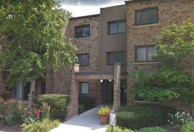 Palatine Condo/Townhouse New: 1100 East Randville Drive #210