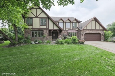 Hoffman Estates Single Family Home New: 3380 Yorkshire Court