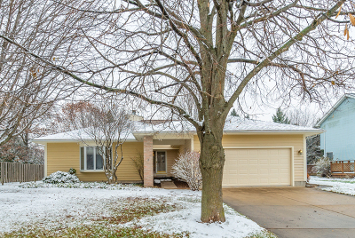 Elburn Single Family Home For Sale: 407 Parkside Drive