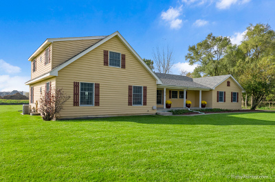 McHenry Single Family Home For Sale: 2519 West Wright Road