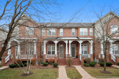 Lisle Condo/Townhouse For Sale: 6162 River Bend Drive