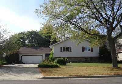 Elgin IL Single Family Home New: $279,700