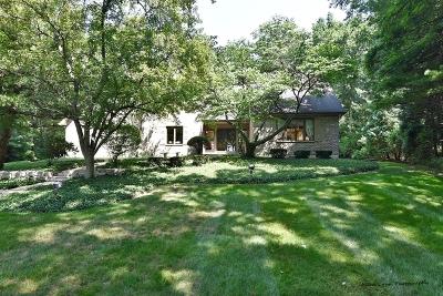Elburn Single Family Home For Sale: 2n945 Bowgren Drive