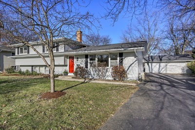 Naperville Single Family Home New: 409 West Gartner Road