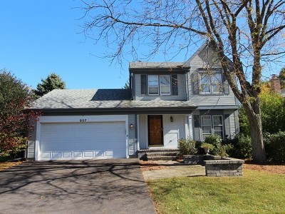 Lake Zurich Single Family Home For Sale: 907 Holly Circle