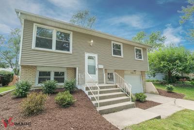 Tinley Park Single Family Home New: 7517 165th Street