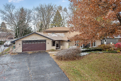 Homer Glen Single Family Home For Sale: 13930 South Cherokee Trail