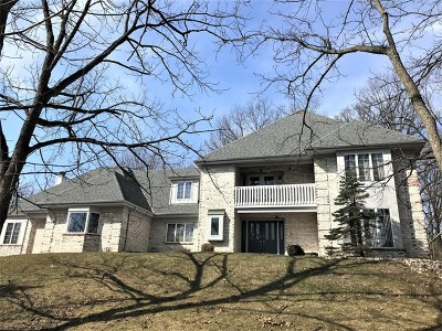 Orland Park Single Family Home New: 3 Old Tamarack Lane