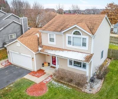 Crystal Lake Single Family Home New: 1425 Fountain Green Drive