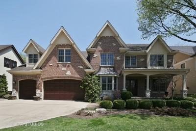 Elmhurst Single Family Home New: 559 South Kenilworth Avenue