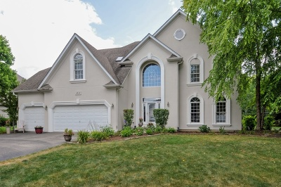 Naperville Single Family Home For Sale: 1824 Baybrook Court