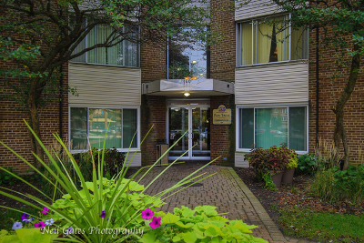 Palatine Condo/Townhouse New: 140 West Wood Street #230