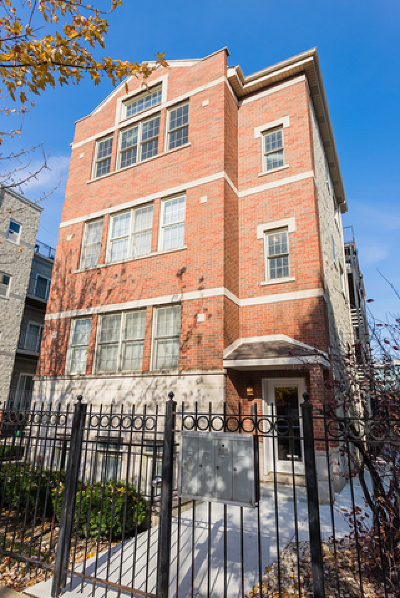 Chicago Condo/Townhouse New: 2446 West Homer Street #3