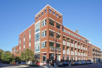 Condo/Townhouse New: 1611 North Hermitage Avenue #302