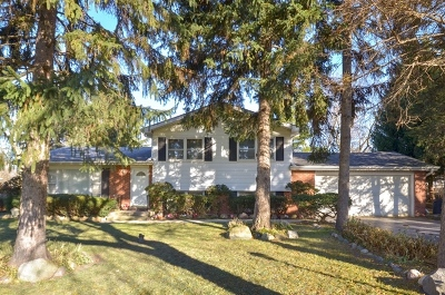 Northbrook Single Family Home For Sale: 4054 Phyllis Road