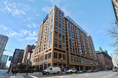 Chicago Condo/Townhouse New: 520 South State Street #1109
