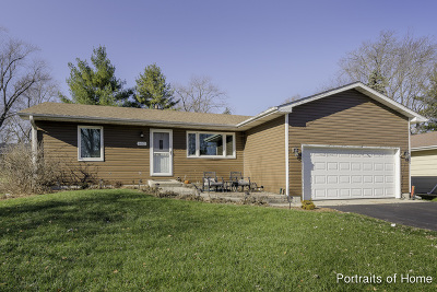 McHenry Single Family Home For Sale: 607 South Broadway Street